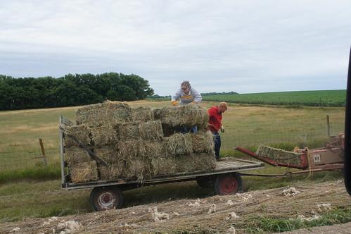 Emma: hay ride