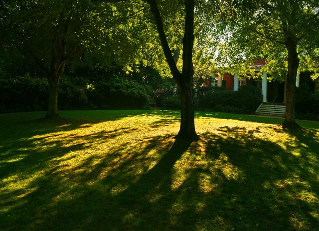 University Gardens (4)