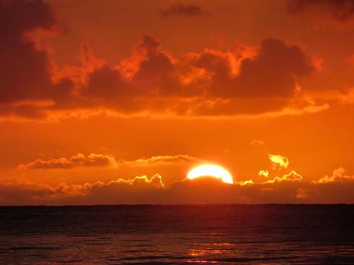 Hawaii - August 2013 279