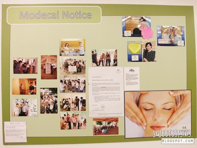 mordecai skin review (3)