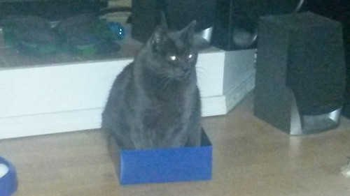 If he fits, he sits by christopher575