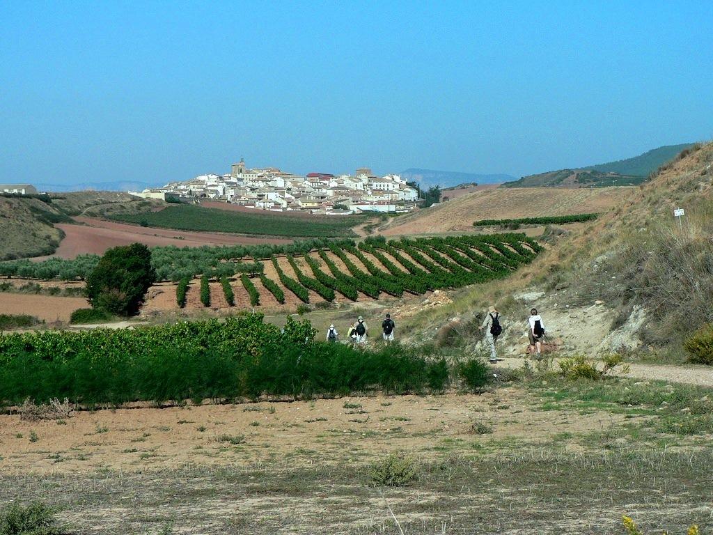 7. Proximidades de Cirauqui, Navarra. Autor, ElcaminodeSantiago092006