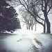 Snow isn't so bad. by benjaflynn