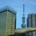 Skytree & Golden Crap 2