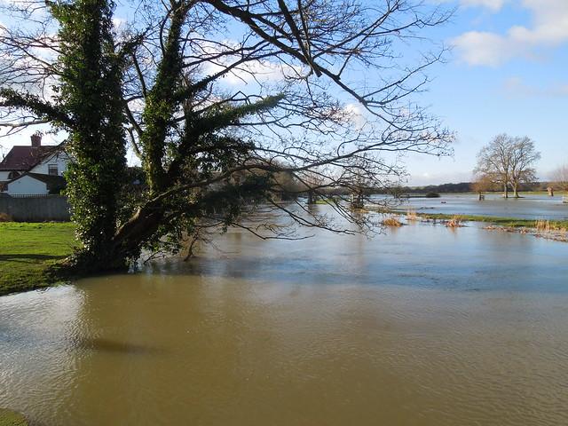 Denford Floods. 9/365.