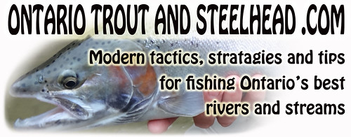 Ontario trout and steelhead.com