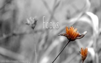 focus-350
