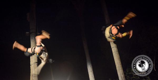 Rhythms of the Night Acrobatics