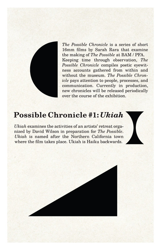 possible chronicle