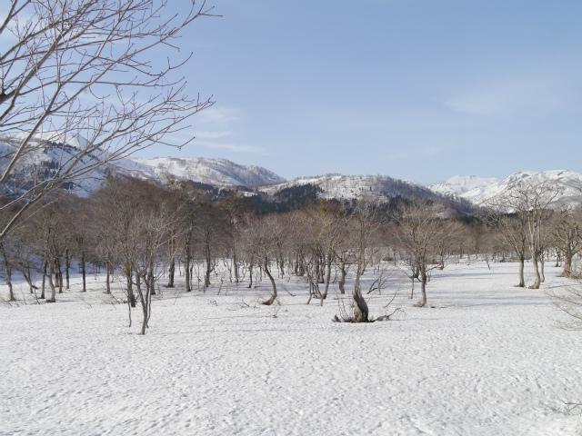 野伏ヶ岳 (152)