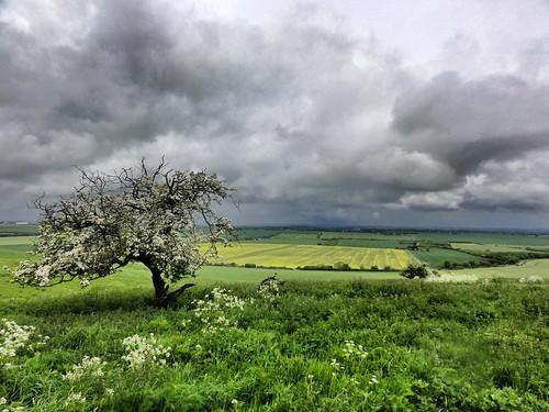 Last View over Swindon