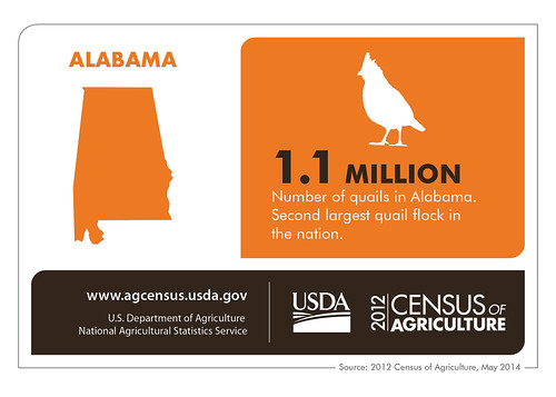 Who knew? Now you do! Check back next Thursday for another state spotlight from the 2012 Census of Agriculture and the National Agricultural Statistics Service.