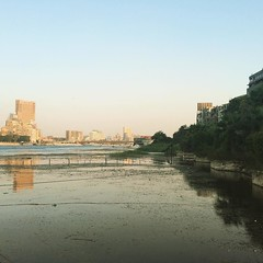 #Cairo afternoon#Egypt #Nile #Blogger #Citizenjournalism