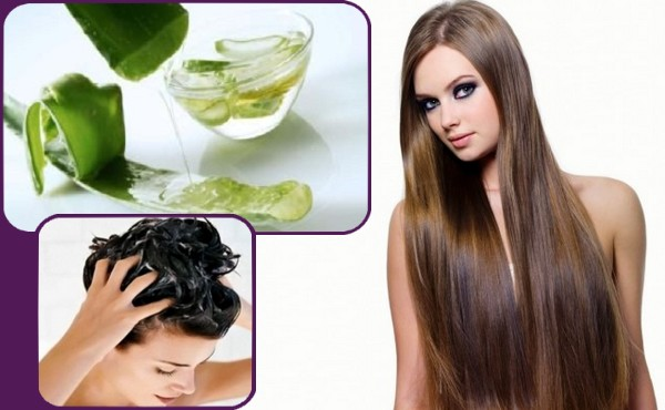 Aloe Vera For Natural Hair Care