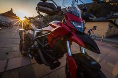Ducati Sunset