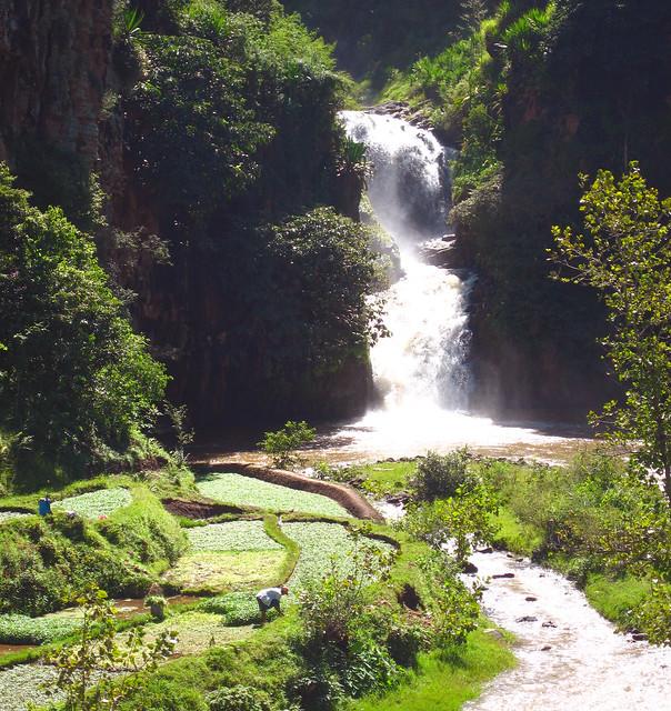 Madagascar2 - 095