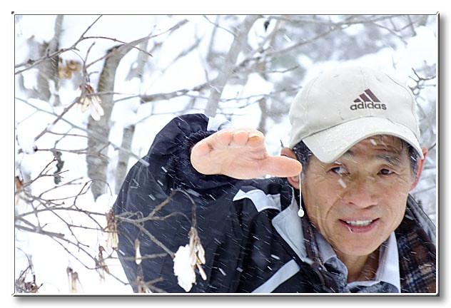 上野先生の親指からぶら下がるヤドリギの実.多少揺らしても落ちないほどの粘着力がある.
