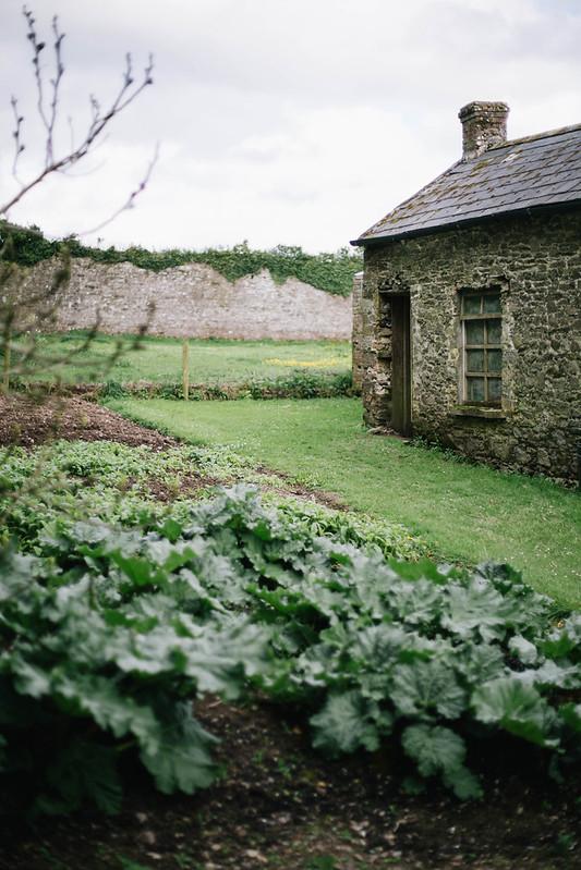 Garden at Ballyvolane