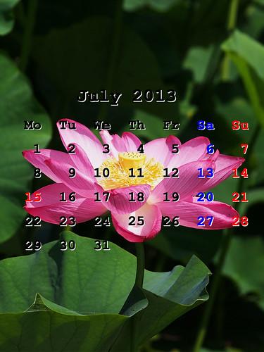 201307_iPhoneWP
