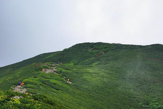 仙丈ヶ岳への登山道