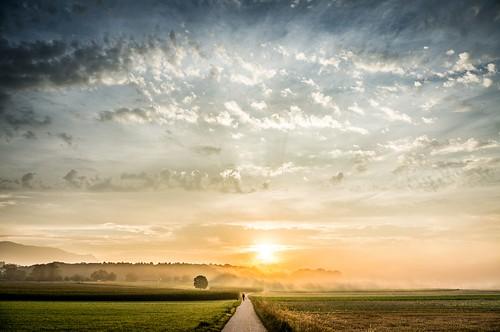 summer sunrise landscape switzerland sony ngc 1855 nex bettlach 5r