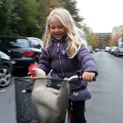 "The Lulu taking ""Gordon Ramsey"" for a bike ride @olekassow #thelulu @cyclelogistics"