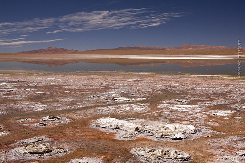 travel reflection bird landscape geotagged flamingo bolivia saltlake laguna bol uyuni potosí phaspani saltflatlake geo:lat=2016376420 geo:lon=6757085360