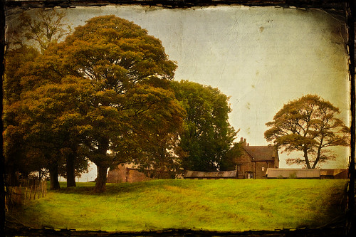 old england tree farmhouse rural vintage landscapes big farm farming farmland lancashire textured tockholes roddlesworth applecrypt