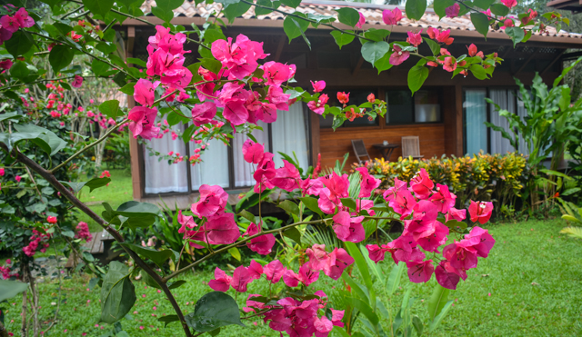 Kenaki Lodge Grounds
