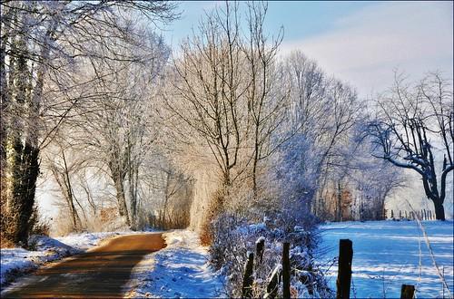 ~~Faits d ' hiver...!~~