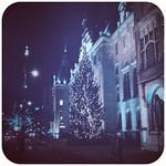 giant Christmas tree outside city hall