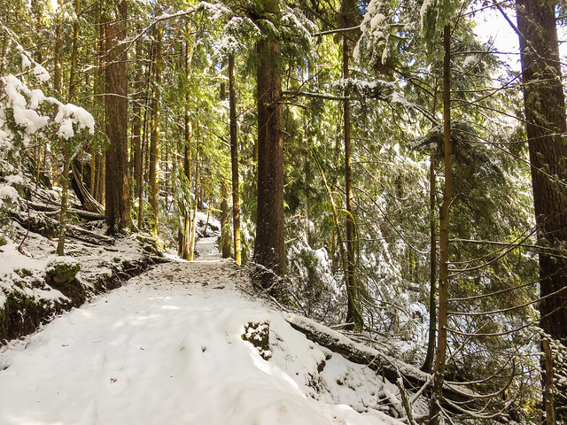 Buntzen Lake trail in the snow