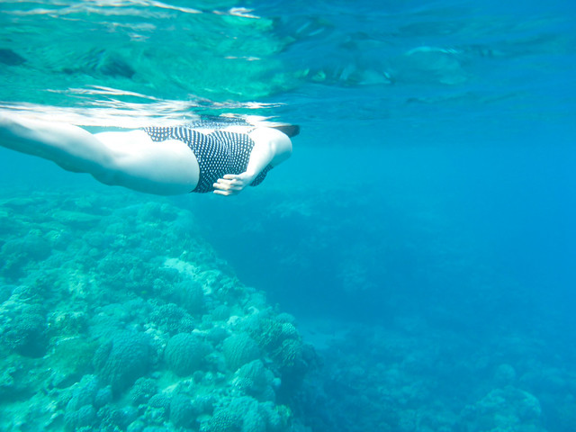 Snorkelling @ Baron Resort, Sharm El Sheikh, Egypt