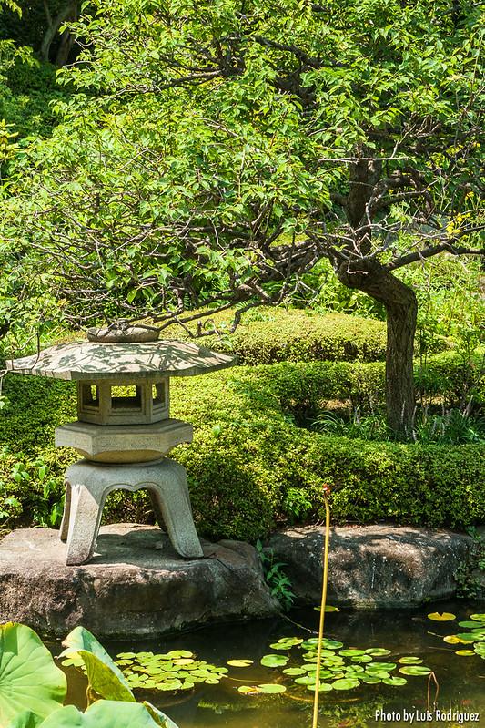 Templo Hasedera en Kamakura-4