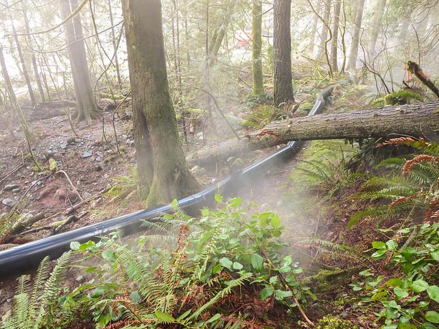 Artificial Mist