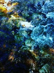 Riverbed by John R. Pleak
