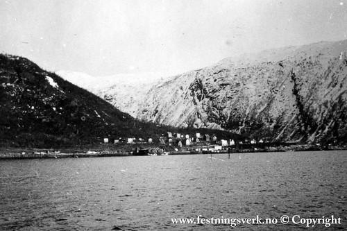 Narvik (2104)