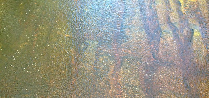 huon-river-tasmania