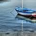 Boat (Study I)