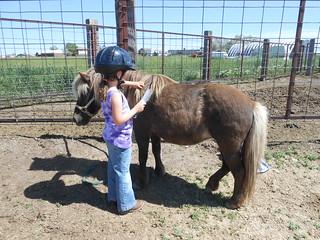 Horse Lessons 10Jun13 (3)