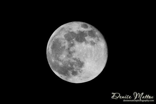 225: Super Moon