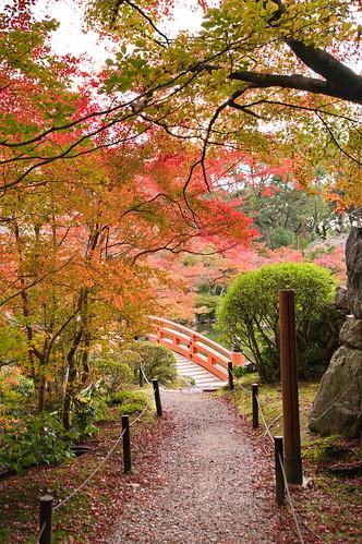 【写真】2012 紅葉 : 醍醐寺/2020-08-07/IMGP6862