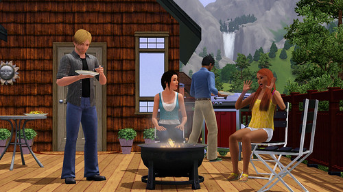 ts3_console_coupleretreat05c-us