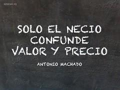 solo_el_necio
