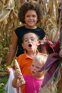 Children of the (Indian) Corn