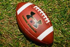 ball(0.0), ball(0.0), grass(1.0), red(1.0), sports equipment(1.0), green(1.0), football(1.0),