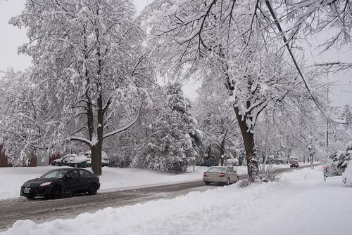 First snow storm of 2013's winter season | Primera tormenta de nieve del invierno del 2013 | Ottawa, Ontario, Canada - 27/11/2013