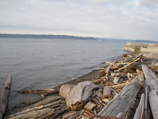 Ocean View Beach Seattle WA face north 12/8/13 9:45am