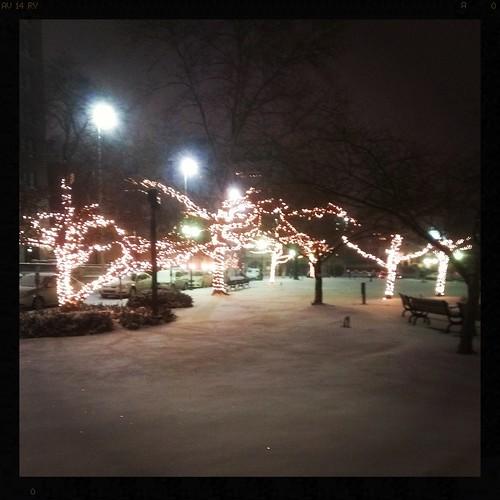 Snowy Lytle Park...
