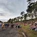 Small photo of Woodford Folk Festival